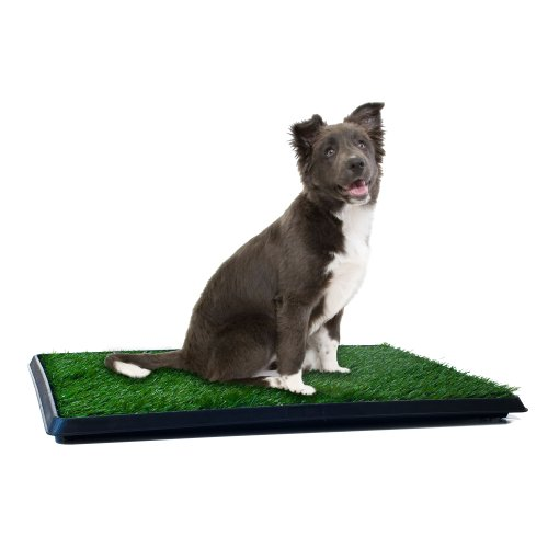 PETMAKER Puppy Potty Trainer - The Indoor Restroom for Pets 20 x 25 (Patio Shopper)
