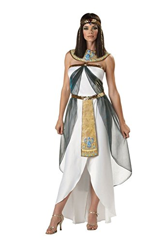Egyptian Couples Costumes (Queen of the Nile Adult Costume - Large)