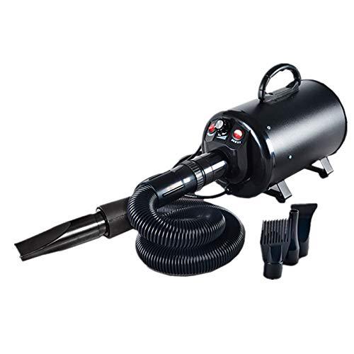 Black PLDDY Collars Pet Grooming Dryer, High Power Silent Pet Blower Blower 220V   110V 2200W Four colors Optional (color   bluee)