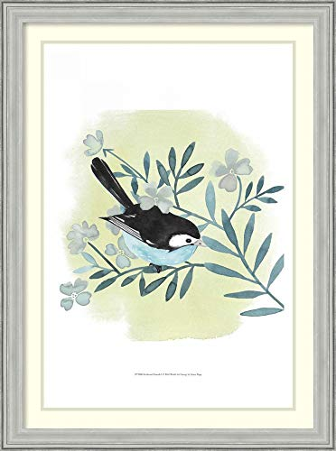 Framed Wall Art Print Feathered Friends I by Grace Popp 26.75 x 36.00