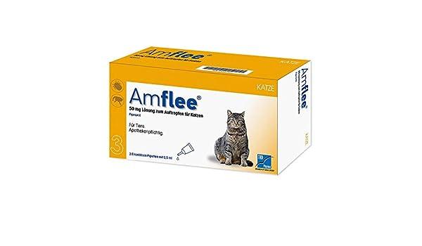amflee 50 mg gato de dosis único pipetas, 3 unidades: Amazon.es: Productos para mascotas