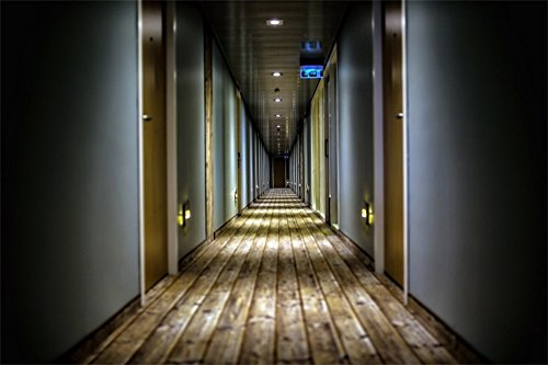 LFEEY 10x7ft 3D Hotel Corridor Photo Backdrop Horror Empty Building Tunnel Hospital Dark Hallway Photography Background Halloween Events Party Decorations Photo Studio Props]()