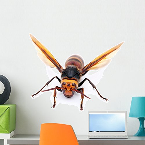 Wallmonkeys Asian Giant Hornet Wall Decal Peel and Stick Graphic WM177801 (24 in W x 16 in H)