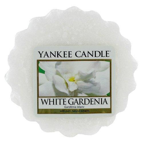 YankeeワックスMelt (ホワイトGardenia ) B006ZZNO2A