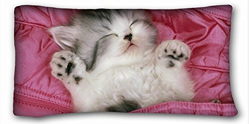 Decorative King Pillow Case Animals kitty bed s lie down sleep fuzzy 20