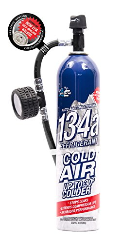 Avalanche Auto A/C 134a Refrigerant – 18oz With In-Line Re-Usable Hose And Gauge by Avalanche
