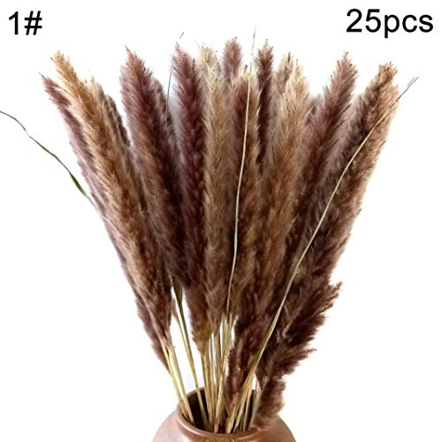 30Pcs//Set Natural Dried Pampas Grass Reed Home Wedding Decor Photography Props