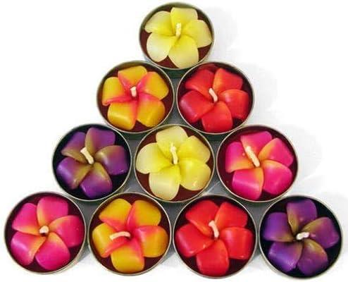 Angels Pride Lot de 10 bougies chauffe-plat Motif fleurs Frangipani
