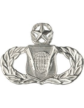 (Air Force No Shine Master Command and Control Badge)