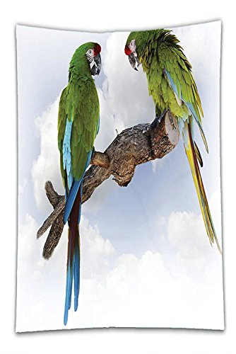 Nalahome Fleece Throw Blanket Parrots Decor Two Parrot Macaw On A Branch Talking Birds Gifted Clever Creatures Of The Nature Decor Green White Brown