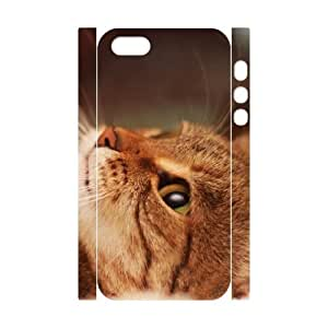 3D Case For Ipod Touch 5 Cover , Cute Cat Paw Closeup Case For Ipod Touch 5 Cover , Stevebrown5v White