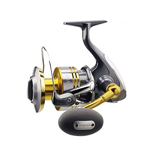 SHIMANO 10 TWINPOWER SW12000XG [Japan import] Review