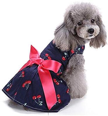 TUOTANG Falda de Moda para Mascotas Ropa para Mascotas Falda de ...