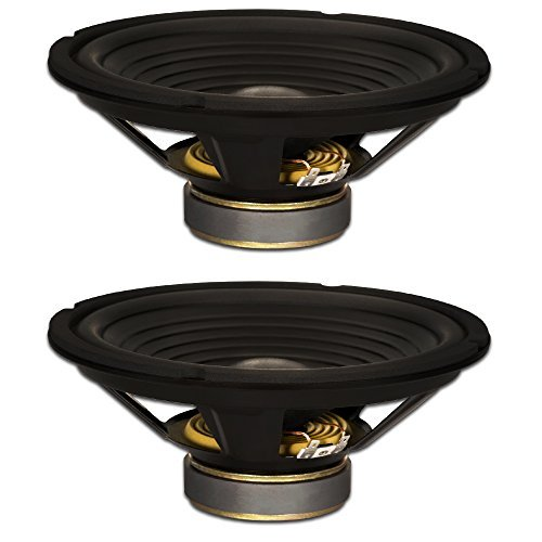 "Goldwood Sound, Inc. Stage Subwoofer, OEM 10"" Woofers 220 Watts each 8ohm Replacement 2 Speaker Set (GW-210/8-2)"