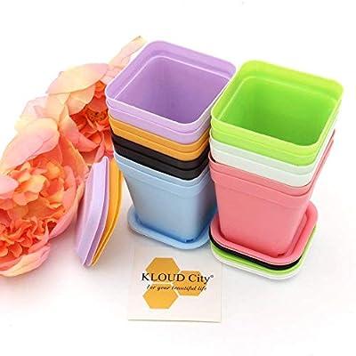 KLOUD City 14pcs Colorful Square Plastic Plant Pot, Planter, Flower Pot with Pallet Tray Saucer for Decoration of Home Office Desk Garden Flower Shop : Garden & Outdoor