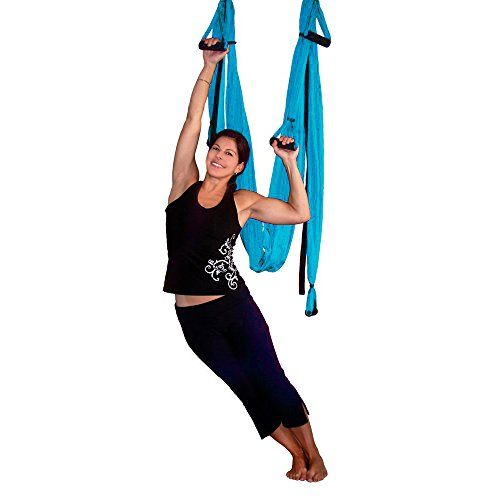 AGPtEK Deluxe Aerial Hammock Yoga Swing/ Inversion/Sling, Flying Antigravity - Blue (Hammock Sling)