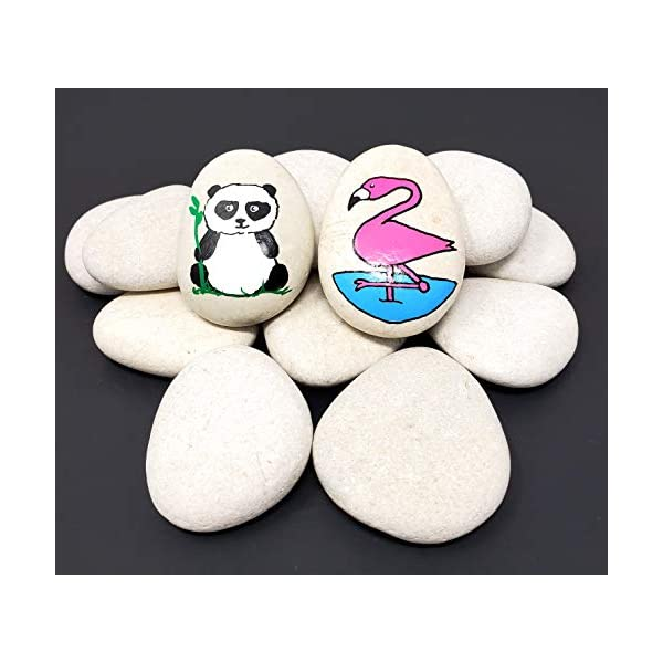 Capcouriers-Rocks-for-Painting-Painting-Rocks-Perfect-for-Kindness-Rocks-About-2-225-inches-in-Length-20-Painting-Rocks