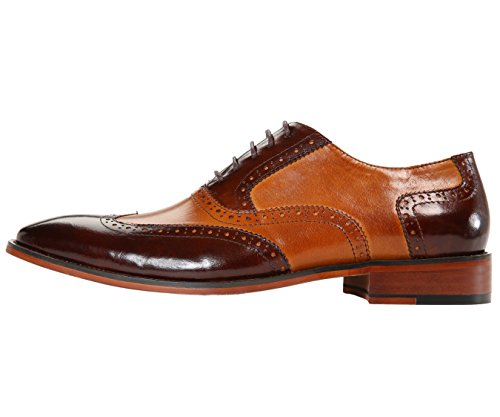 Shoe Mens Cognac Spectator Low High Two Oxford Genuine Green Tone or Wingtip Top Asher Calf Leather Top Dress PTqRwC