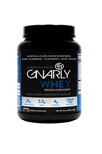Gnarly Nutrition Whey Sports Protein || All Natural New Zealand Grass Fed Whey Protein (Chiseled Chocolate) For Sale