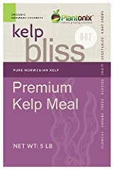 Plantonix Premium Kelp Meal is pure, sustainably harvested Giant Kelp (Ascophyllum Nodosum). Like a super multivitamin for your plants, kelp meal contains over 70 essential micronutrients as well as provides soil structure and organic materia...