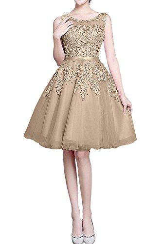 Jugendweihkleider Abendkleider A Kurzes Braut La Cocktailkleider Linie mia Knielang Spitze Festlichkleider Champagner Neu qw1pp0RU