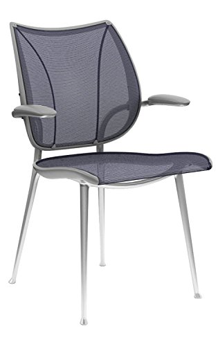 Liberty Side Chair by Humanscale: Fixed Duron Arms - Monofilament Stripe Mesh Textile Seat/Back - Silver Frame/Atlantic Mesh ()