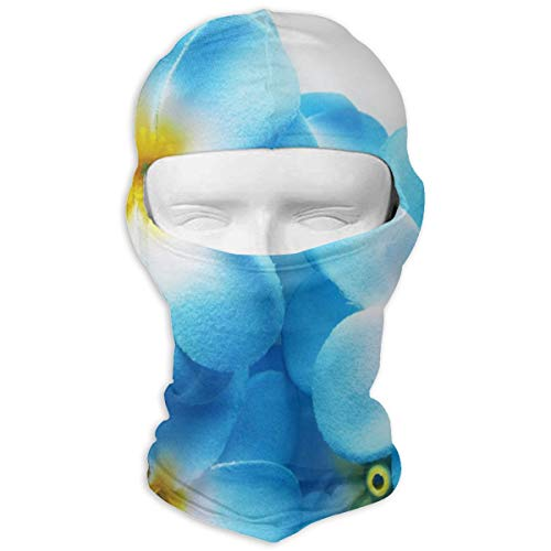 LoveBea Balaclava Gallery Hawaiian Plumeria Flower Blue Full Face Masks Ski Mask Motorcycle Hood for Cycling Sports Mountaineering]()