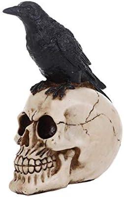 1949shop Cráneo Humano y Adornos de Resina Modelo Cuervo-A: Amazon ...