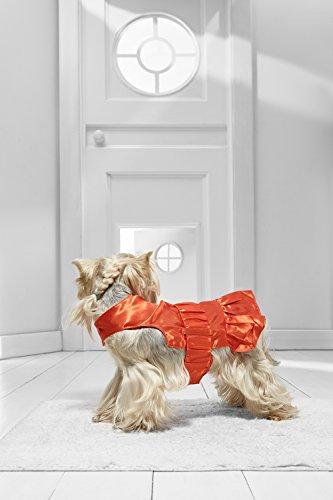 [Toy Dog Cute Dress for Yorkie Pom Chihuahua Papillon Lhasa Apso Mini Dachshund (Medium Toy Size,] (Mini Dachshund Halloween Costumes)