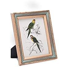 FFYYEE Retro-Wood Picture Frame F218-3 (8X10, Light green)