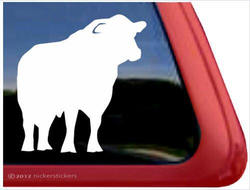 (Black Angus Bull Window Decal Sticker)