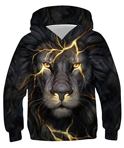 chicolife Boys Hoodies 13-14 Years 3D Animal Gold Lion Hoody Sweater Hip-Hop Youth Round Neck Hooded Sweatshirts Long Sleeve Jumper with Pocket XL