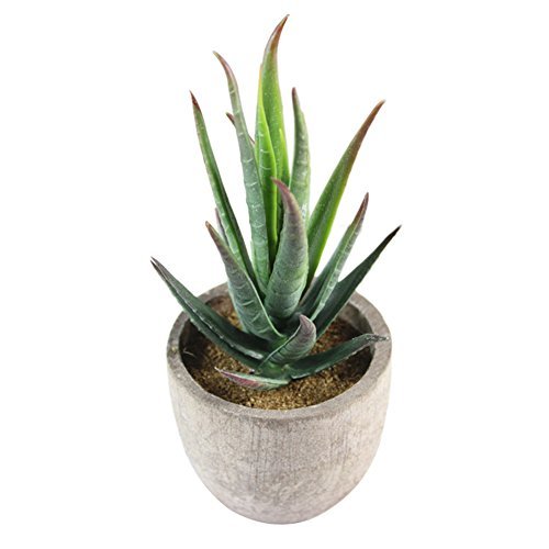Succulent Plants,Sundlight Artificial Mini Plants Fake Succulents Aloe Vera Potted Green for Home Office Bathroom Decoration,2.75W x 2H