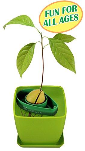 pot growing kit - 2