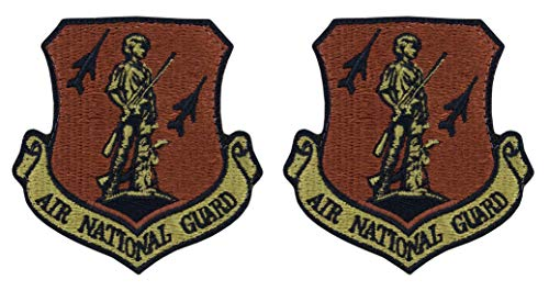- USAF Air National Guard OCP Spice Brown Patch with Hook Fastener- 2 Pack
