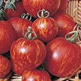 Tigerella Tomato 90 Seeds - GARDEN FRESH PACK!
