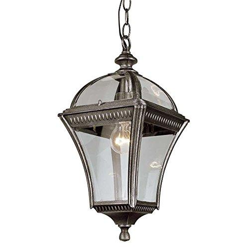 Transglobe Lighting Outdoor 1 Light Hanging Lantern in US - 8