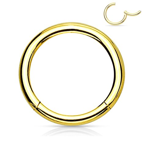 (Forbidden Body Jewelry 16G 10mm Surgical Steel Hinged Easy Use Hassle Free Seamless Hoop Body Piercing Ring, Gold Tone)