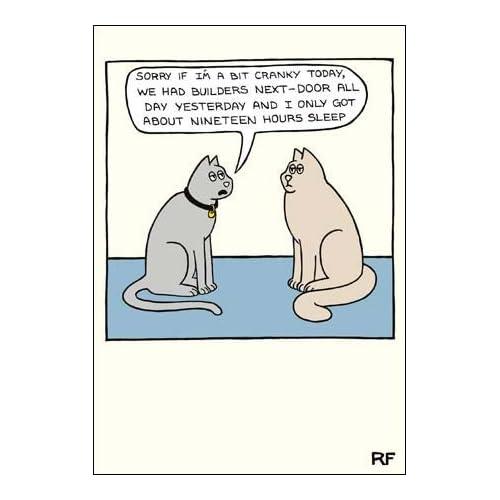 Humorous Greeting Card CM8897 Blank Birthday