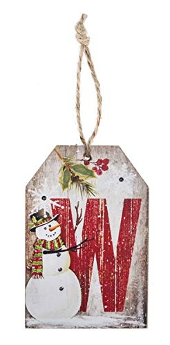 Ganz Light Up W Decorative Hanging Ornament (Ornaments Letter Christmas Alphabet)