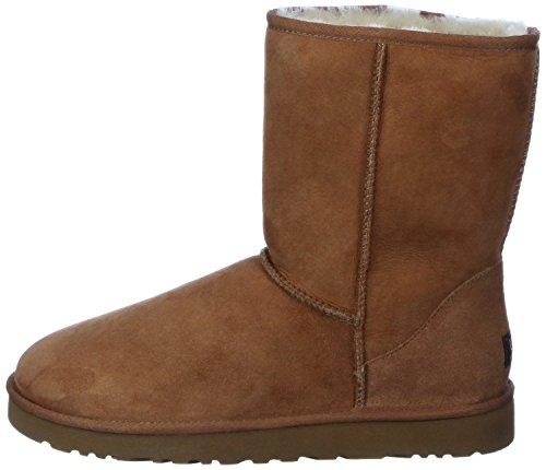 Short Australia Ugg Boots Womens Classic Chestnut Fawyusq Vandkunst Com