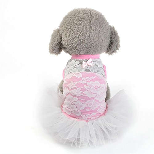 Pet Dress,Haoricu Hot Sale!2017 Dog Cat Floral Lace Mesh Skirt Puppy Princess Dress for Small Dogs Costume (S, (Sale Costumes)