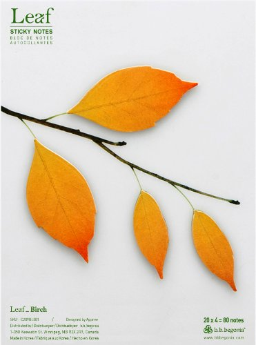 b.b.begonia Leaf_ Birch Sticky Notes, Brown, Large