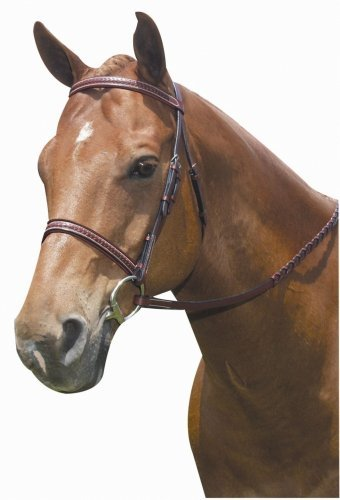 - Kincade Padded Full Bridle, Brown