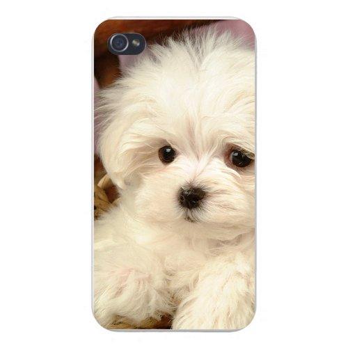 iphone 5 custom - 2