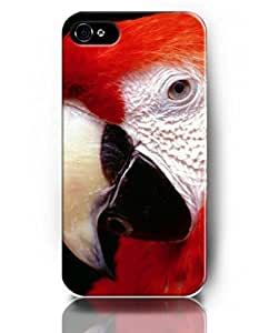Exquisite Colored Pattern - Red Parrot - UKASE Back Case Cover Protector Skin for iPhone 4/4S