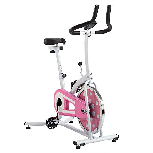 Sunny Health & Fitness P8100 Pink Indoor Chain Drive Cycling Bike