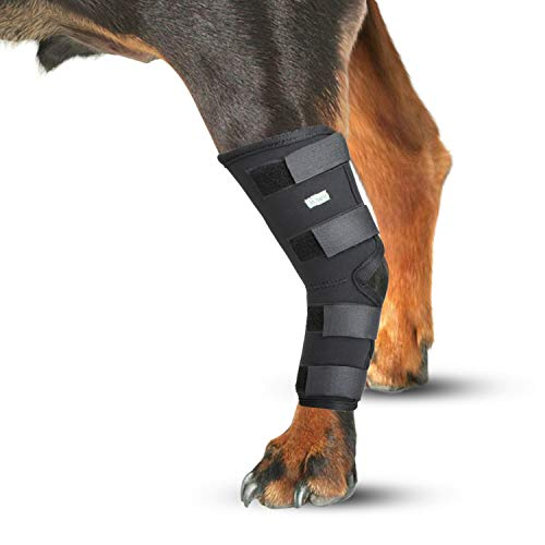 IN HAND Dog Leg Brace, Pair of Dog Canine Rear Leg Hock Joint Wraps Protects Wounds As They Heal Compression Brace Heals, Prevents Injuries and Sprains, Dog Rear Leg Hock