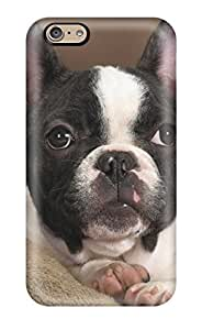 New Arrival Boston Terrier Dog GvcWLfB8829onQlL Case Cover/ 6 Iphone Case