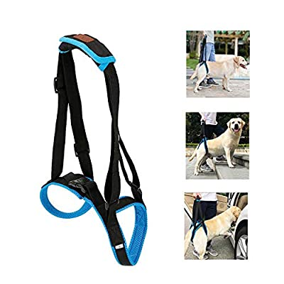KOBWA Dog Walking Lifting Carry, Dog Mobility Lift Support Harness for for Hip Assist Stability Injured Disabled Arthritis ACL Joint Pain Elderly